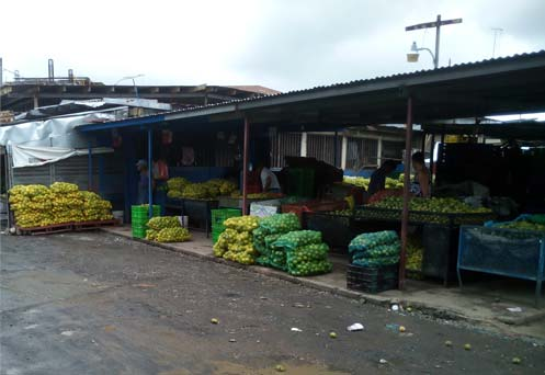 Fruit and vegetable market Panama City